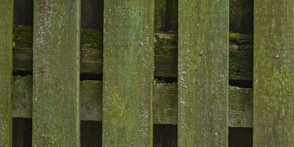 discolored green fence