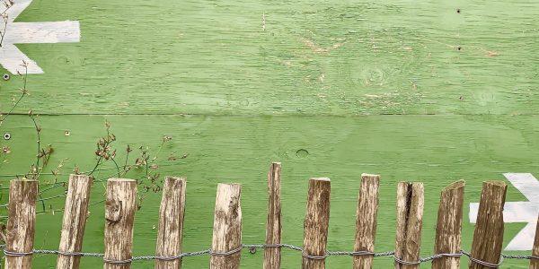 rotting fence
